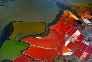 multi-colored San Francisco Bay Salt Ponds