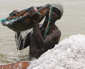 a salt collector scoops salt out of Lake Retba