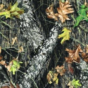 mossy oak break up pattern